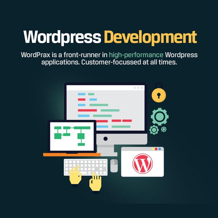 专业WordPress主题开发